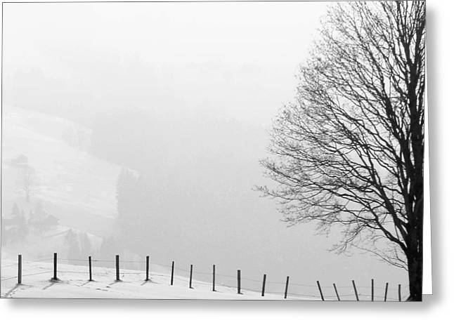 Beautiful Winter Landscape With Tree And Fence Greeting Card
