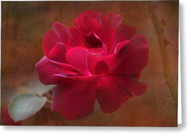 Beauty Among Thorns Greeting Card