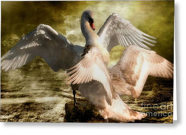 Beauty And Power 2 Greeting Card by Wobblymol Davis