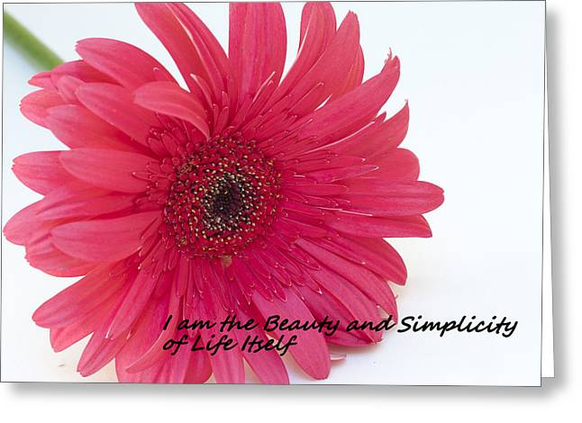 Beauty And Simplicity Greeting Card by Patrice Zinck