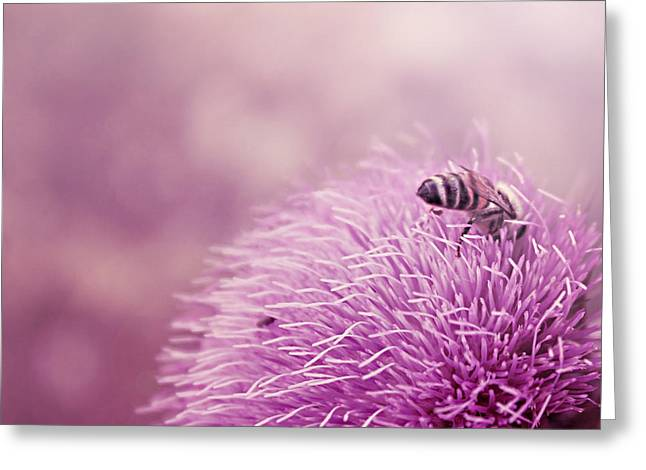 Beauty And The Bee Greeting Card