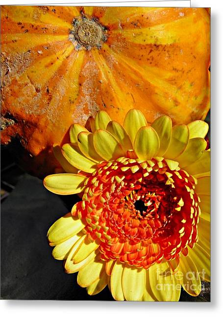 Beauty And The Squash 2 Greeting Card by Sarah Loft