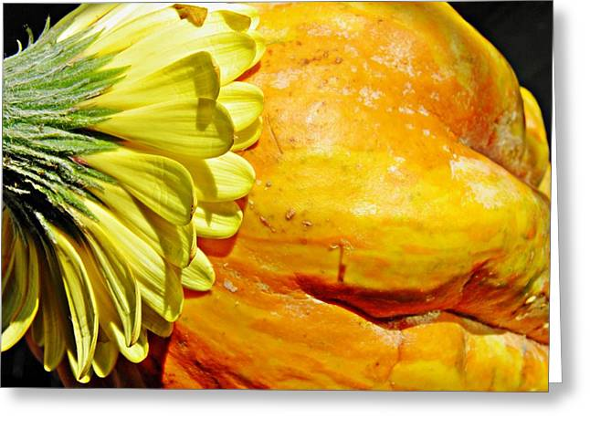 Beauty And The Squash 3 Greeting Card by Sarah Loft