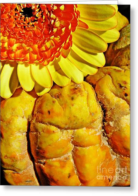 Beauty And The Squash Greeting Card by Sarah Loft