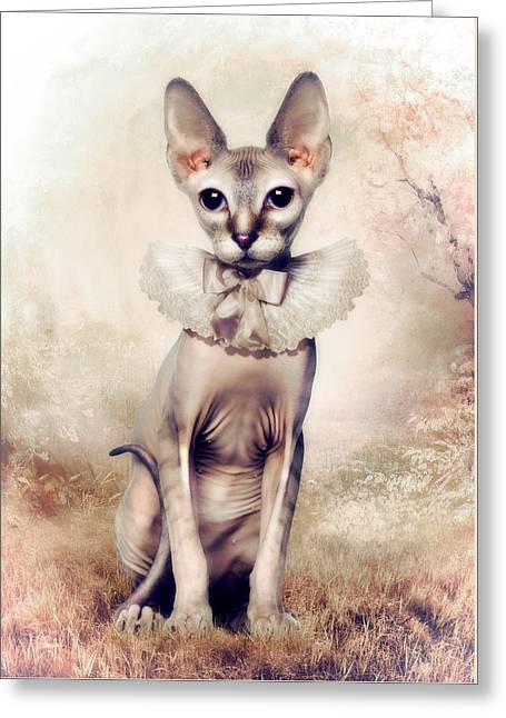 Beauty Greeting Card by Cindy Grundsten