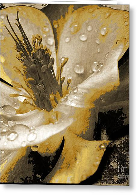 Beauty II Greeting Card by Yanni Theodorou