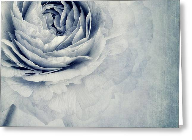 Beauty In Blue Greeting Card by Priska Wettstein