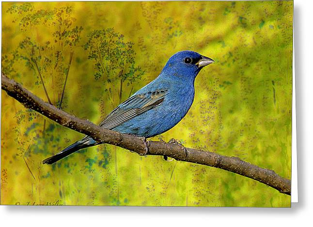 Greeting Card featuring the digital art Beauty In Nature - Indigo Bunting by J Larry Walker