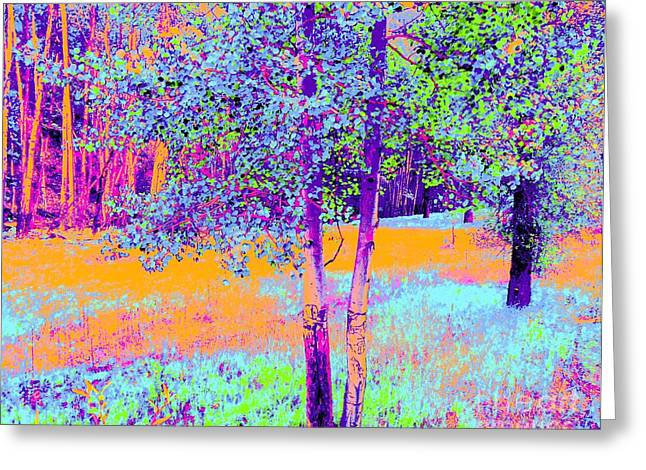 Beauty Of An Aspen Grove Greeting Card by Ann Johndro-Collins