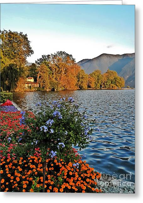 Beauty Of Lake Lugano Greeting Card
