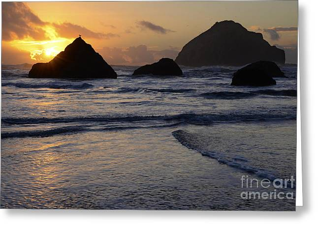 Beauty Of Oregon Bandon Beach 1 Greeting Card by Bob Christopher