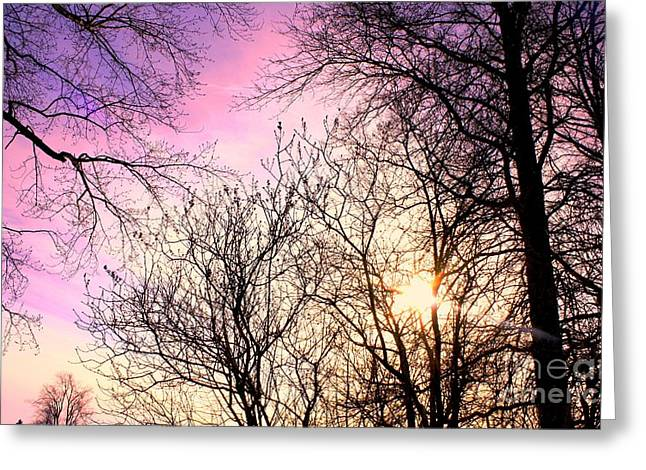 Beauty On Earth Greeting Card by Michael Grubb