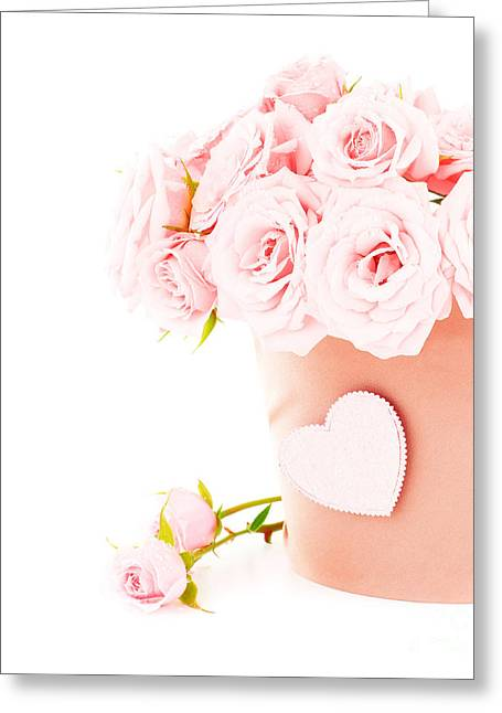 Beauty Pink Roses Greeting Card by Boon Mee