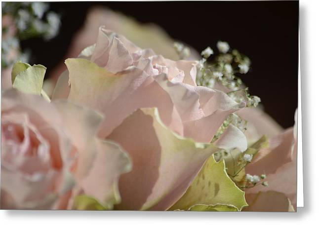 Beauty Up Close Greeting Card by Deprise Brescia