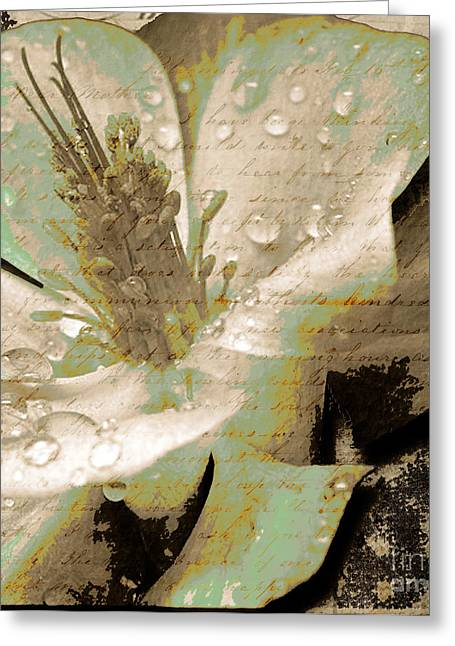 Beauty Vi Greeting Card by Yanni Theodorou