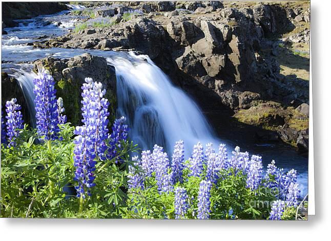 Beautyfull Cascade Greeting Card
