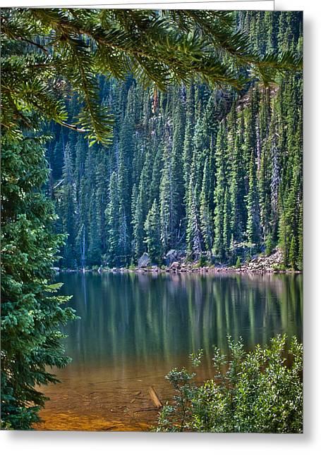 Beaver Lake  Greeting Card