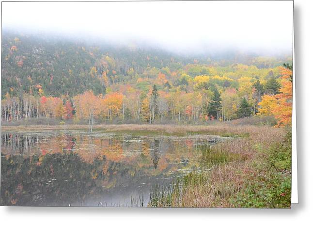 Beaver Lake Maine Greeting Card