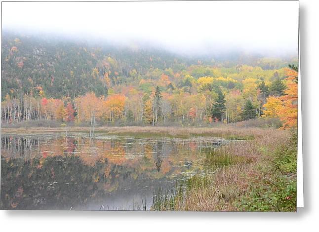 Beaver Lake Maine Greeting Card