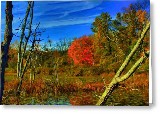 Beaver Marsh In October Greeting Card by Dennis Lundell