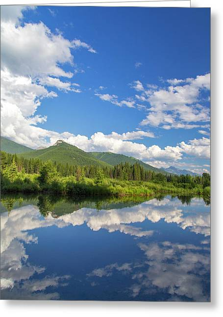 Beaver Pond Along The Flathead River Greeting Card by Chuck Haney