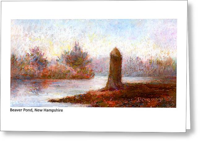 Beaver Pond New Hampshire Greeting Card