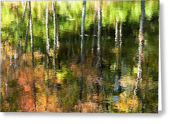 Greeting Card featuring the photograph Beaver Pond Reflections 1 Gatineau Park Quebec by Rob Huntley