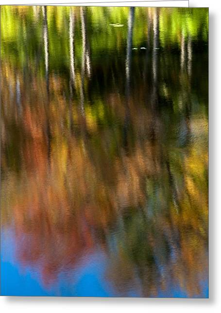 Beaver Pond Reflections 5 Greeting Card by Rob Huntley