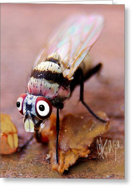 Greeting Card featuring the photograph Beaver Tooth Fly by Chris Fraser