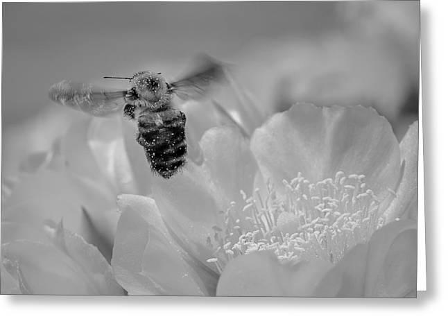 Bee Rising Greeting Card