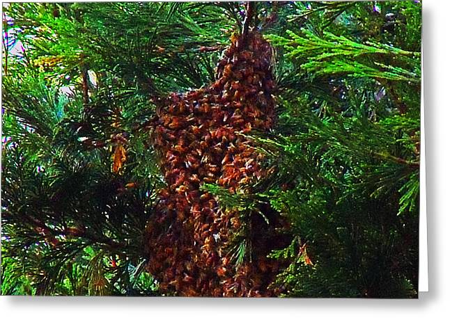 Bee Swarm Greeting Card by Steve Battle