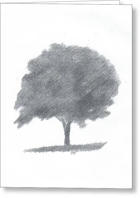 Beech Tree Drawing Number Two Greeting Card by Alan Daysh