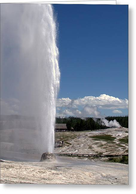 Beehive Geyser - Yellowstone National Park Greeting Card by Brian Harig