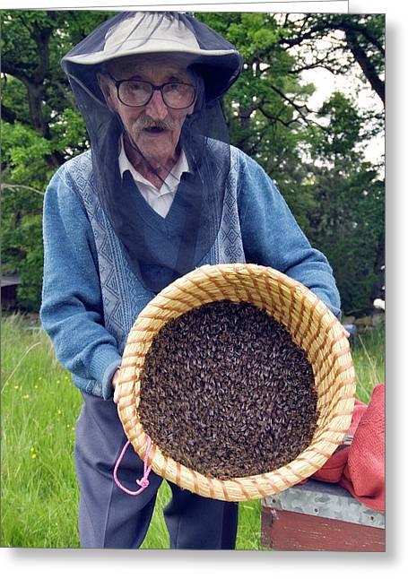 Beekeeper Collecting Swarming Honeybees Greeting Card