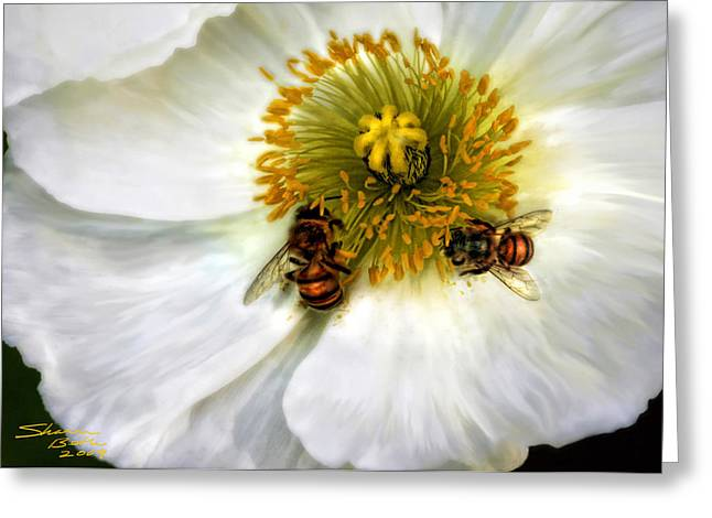 Bees On A Flower Greeting Card by Sharon Beth