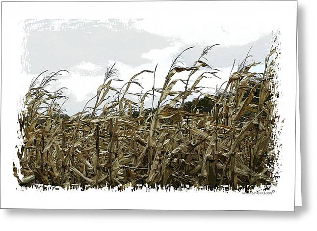 Before The Harvest Greeting Card by Londie Benson