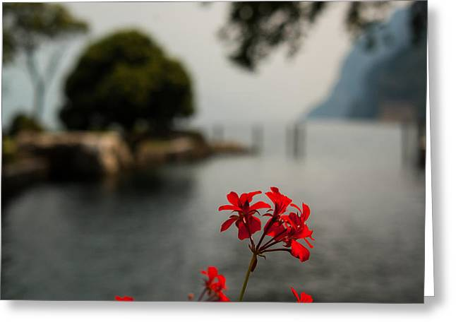 Before The Mists Come Greeting Card