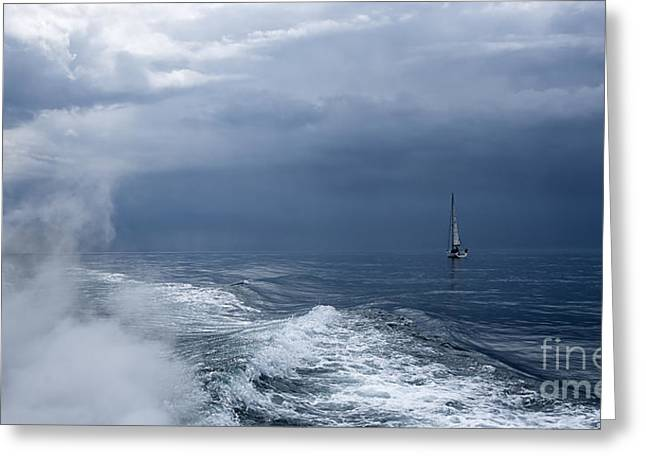 Before The Storm Greeting Card by Svetlana Sewell