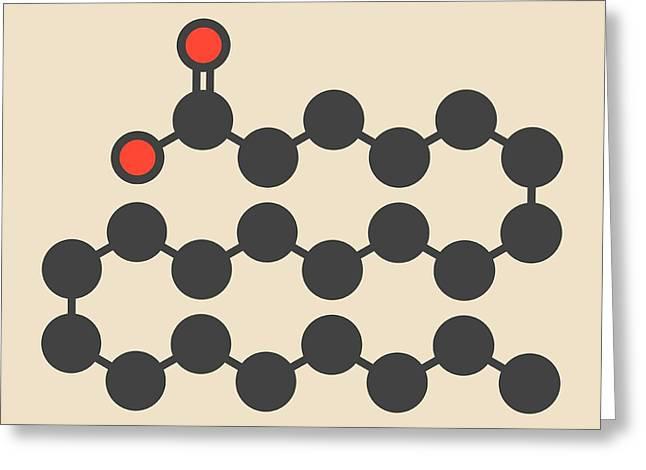 Behenic Acid Molecule Greeting Card by Molekuul