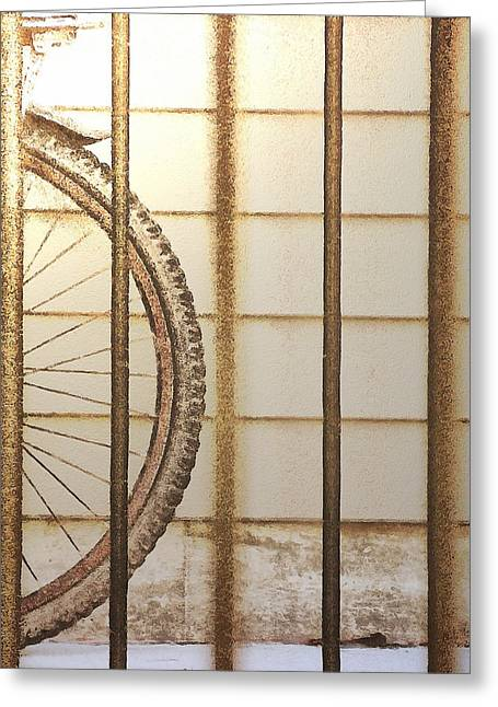 Behind Bars Greeting Card by Steve Taylor