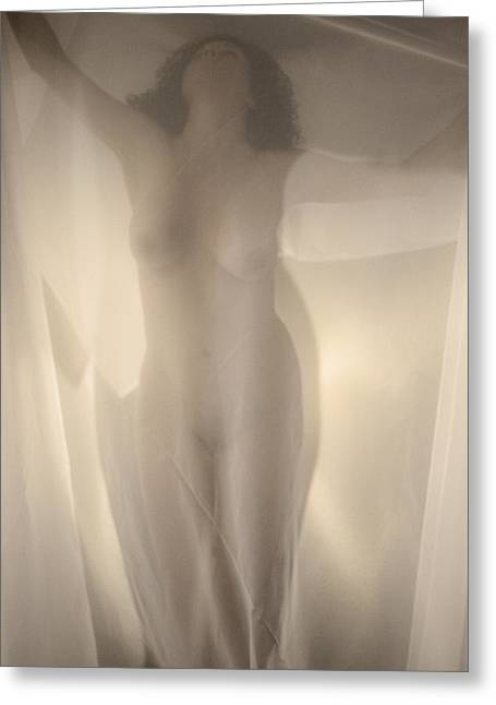 Behind Curtain Nude Greeting Card