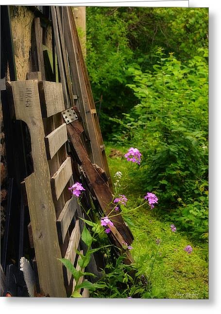 Behind The Old Shed Greeting Card by Mary Machare