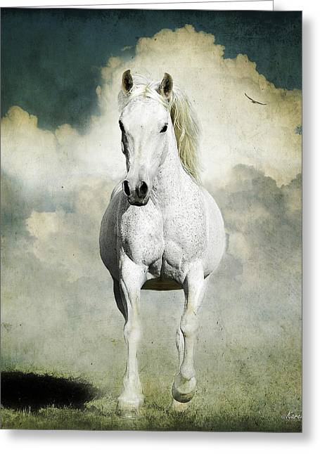 Behold A White Horse Greeting Card by Karen Slagle
