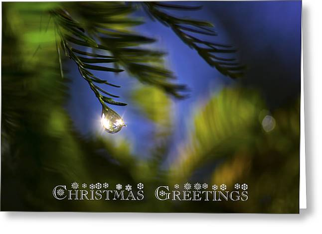 Bejeweled Christmas Greeting Greeting Card by Mark Andrew Thomas