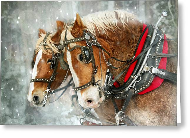 Belgian Snowflakes Greeting Card