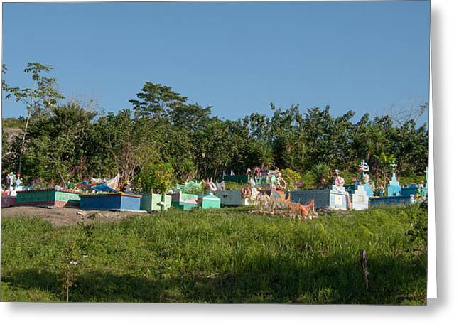Belize Cemetery Greeting Card
