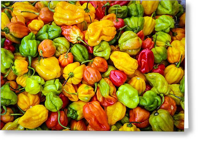 Belize Peppers Greeting Card