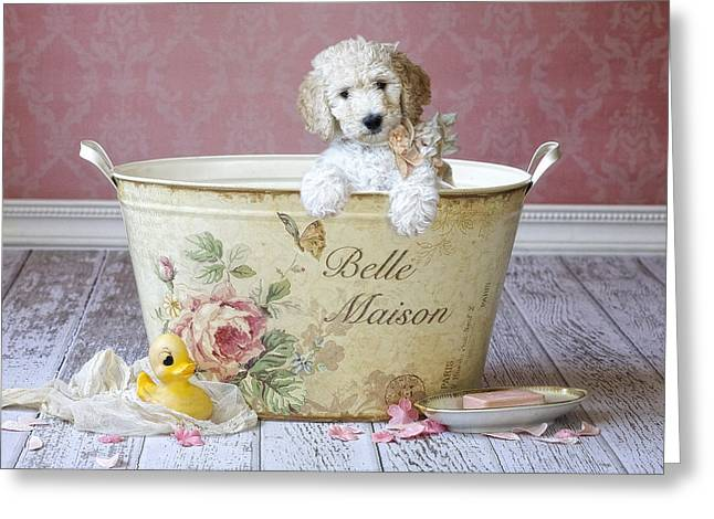 Bella Maison Greeting Card by Lisa Jane