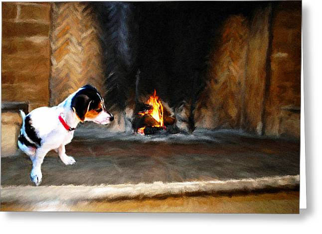 Bella Greeting Card by Roger  Booton