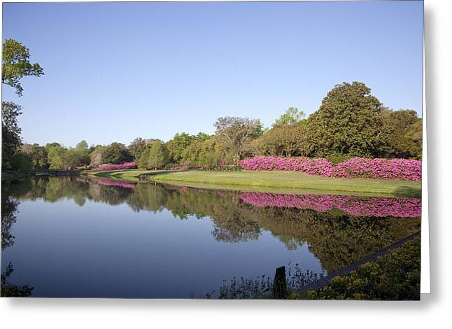 Bellingrath Gardens In Theodore Greeting Card
